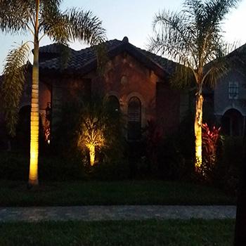 Fort Myers New Landscape Lighting